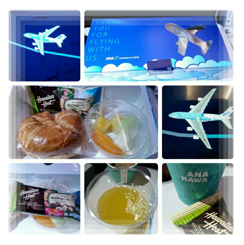 2019年5月『エアバスA380就航・日本帰国便に乗る ホノルル四日間の旅』⑦_d0219834_15562081.jpg
