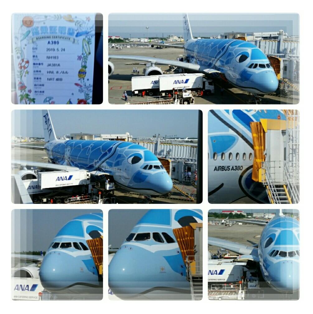 2019年5月『エアバスA380就航・日本帰国便に乗る ホノルル四日間の旅』⑦_d0219834_15564190.jpg