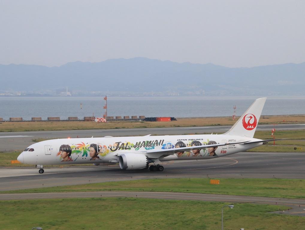 JAL 嵐ジェット B787-9 2019年_d0202264_727465.jpg