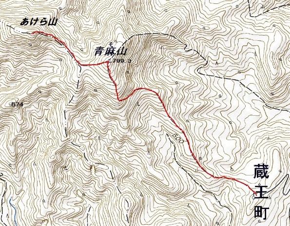 青麻山(37回目)・あけら山 ~ 2019年6月22日_f0170180_05445896.jpg