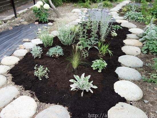 梅雨の庭しごと 芝刈りと植栽スペースの雑草対策_c0293787_20184133.jpg