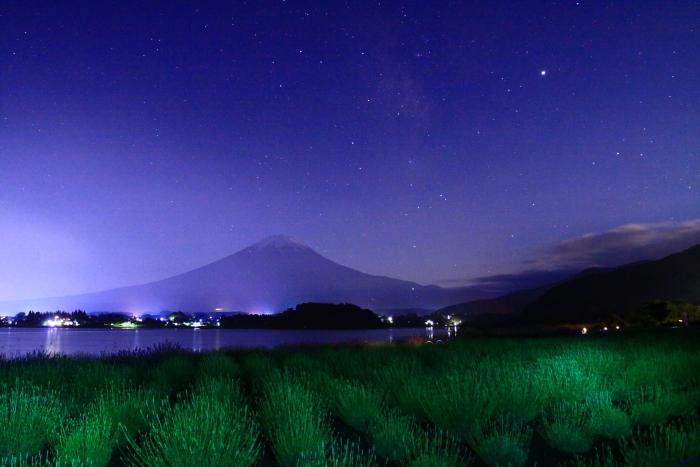 令和元年6月の富士(15)河口湖夜のラベンダーと富士_e0344396_16224528.jpg