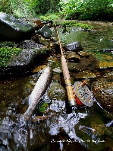 週末の釣り_d0261148_12015659.jpg