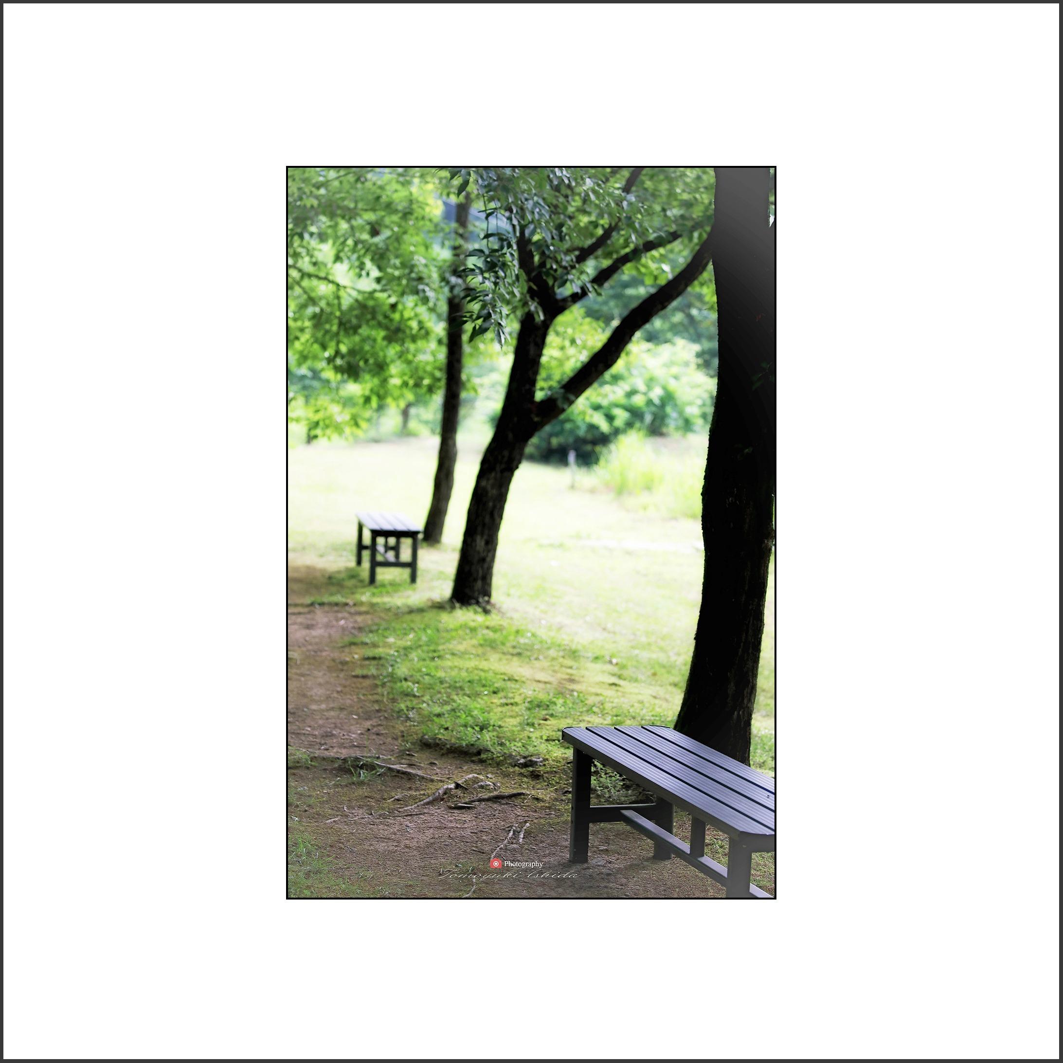 お散歩スナップ_c0253556_05462909.jpg