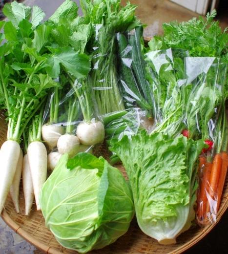 今週の野菜セット(6/25~6/29着)_c0110869_12393623.jpg