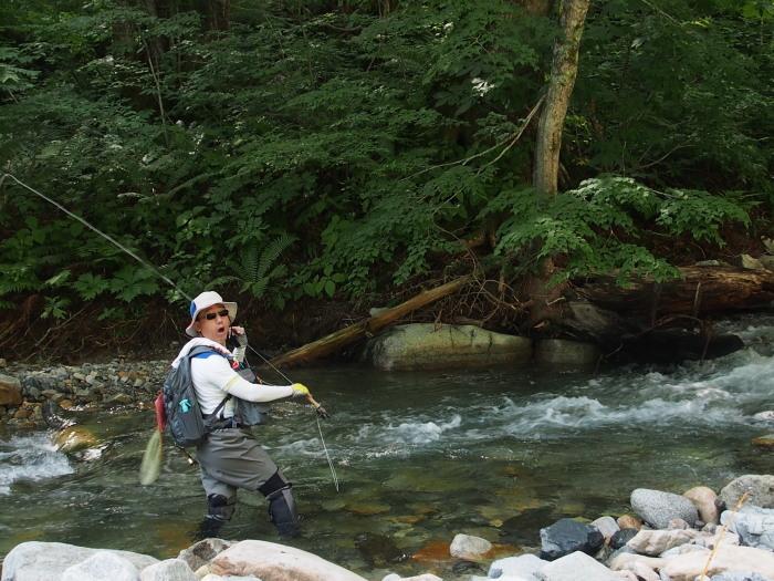 未知の溪を探釣する。_c0197578_23014183.jpg