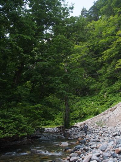 未知の溪を探釣する。_c0197578_23174022.jpg