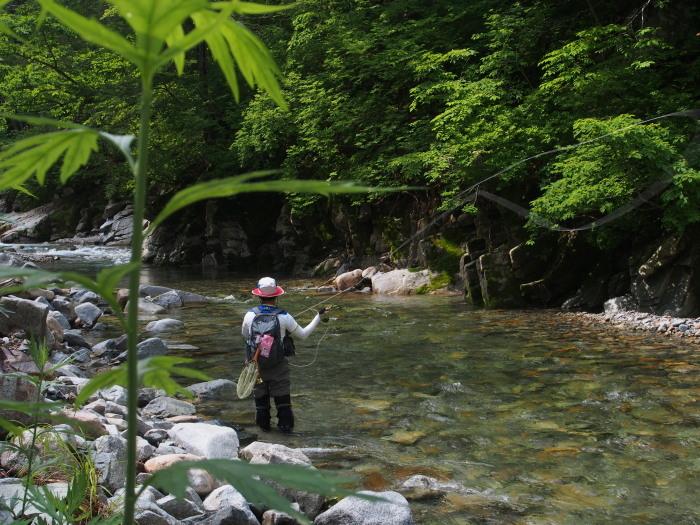 未知の溪を探釣する。_c0197578_23211241.jpg