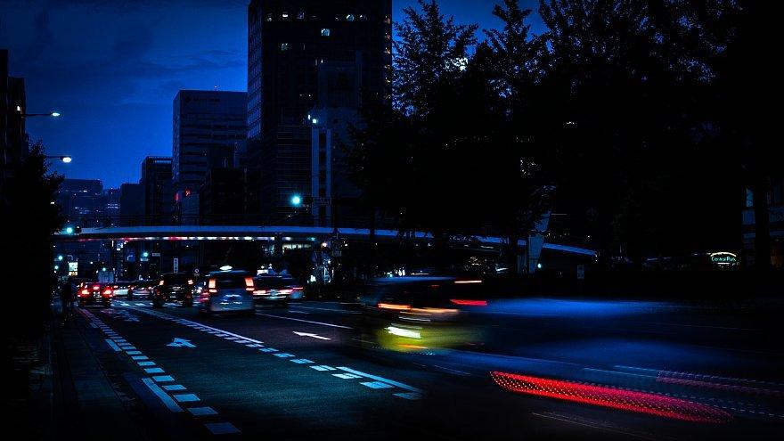 夏至の宵に戯れる光蜥蜴_d0353489_19120260.jpg