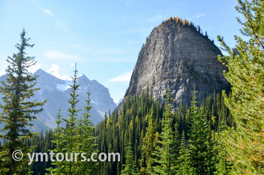 現地ガイドお勧め。カナディアンロッキーで登るべき山 トップ10 [目指せ登頂!]_d0112928_08355202.jpg