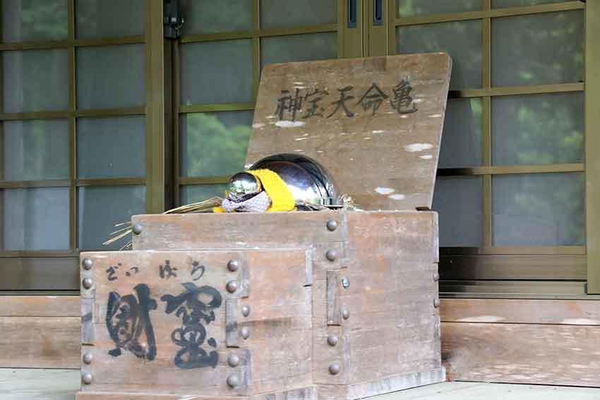 名西郡神山町「上一宮大粟神社」-2♪_d0058941_19430076.jpg
