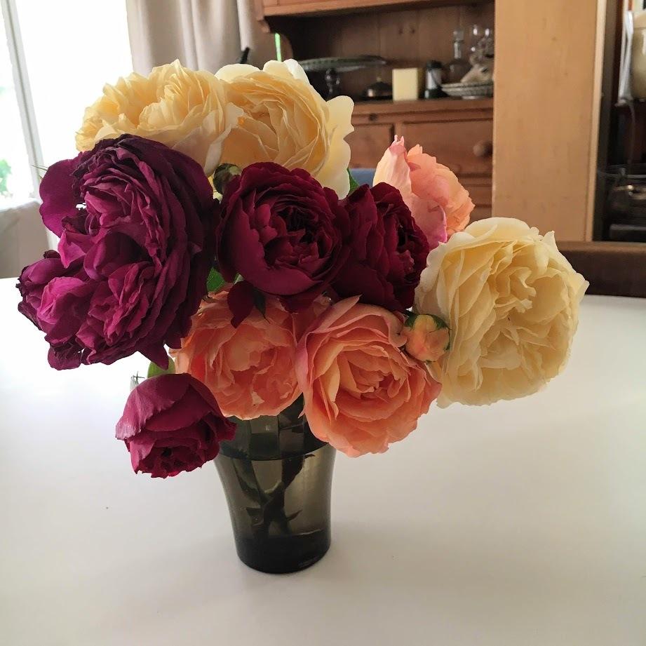 彩豊かなバラと黒ガラス_e0044855_05085232.jpg