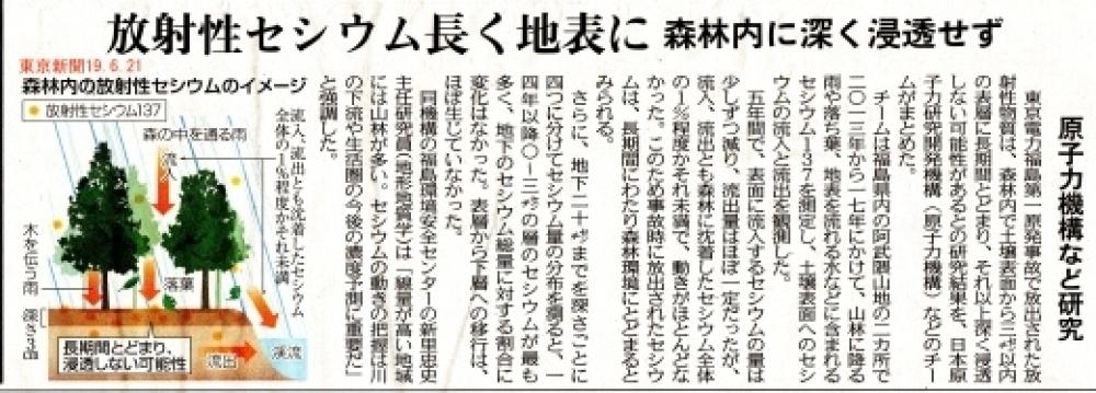 放射性セシウム長く地表に 森林内に深く浸透せず 原子力機構など研究 / 東京新聞 _b0242956_06183083.jpg