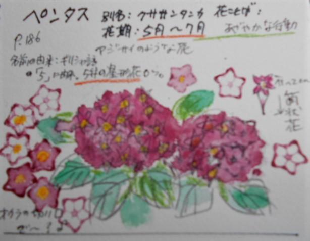 f0179357_13544404.jpg