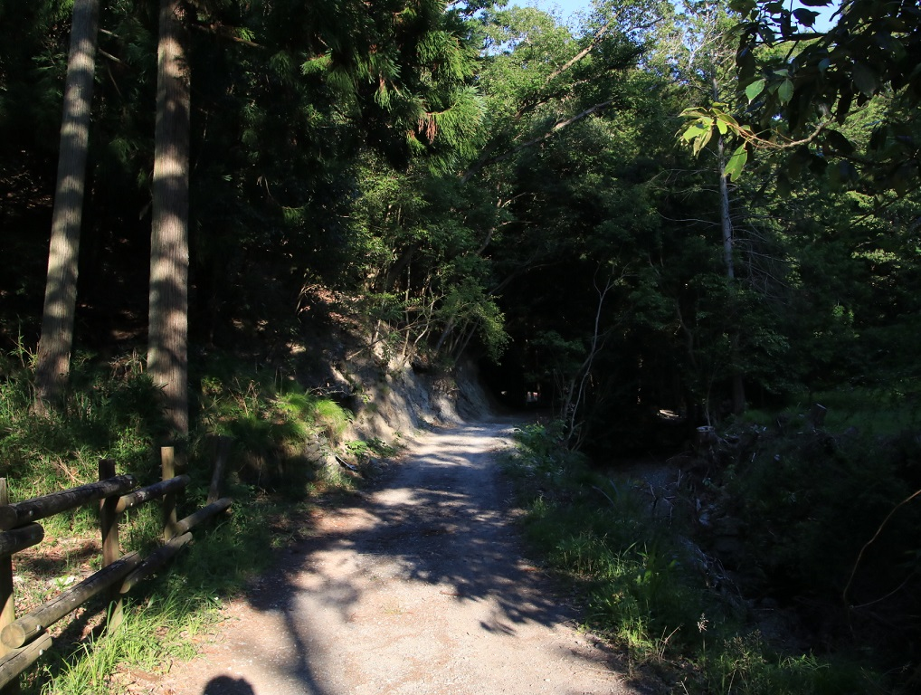 能勢1700系 1707F 仕事終わりに妙見山付近を歩いてみた!_d0202264_195524.jpg