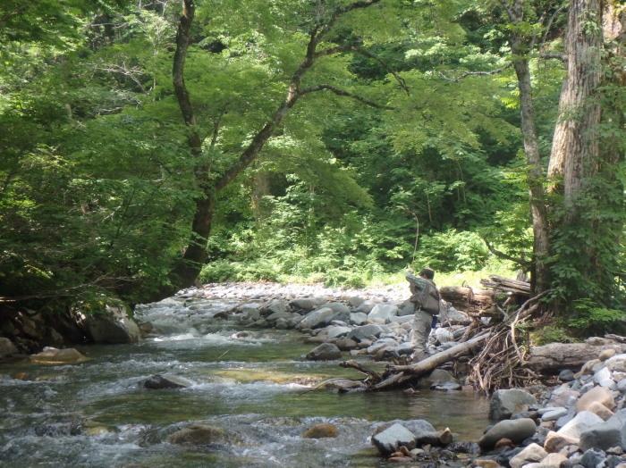 未知の溪を探釣する。_c0197578_22594976.jpg
