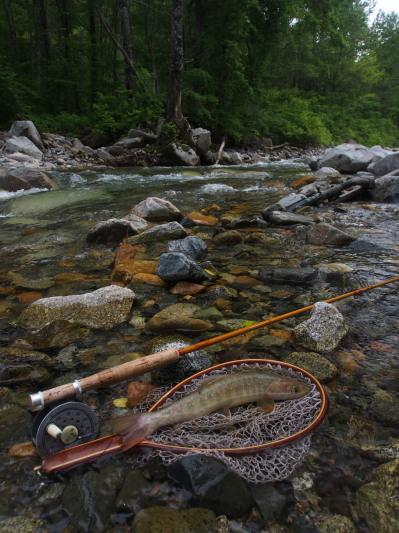 未知の溪を探釣する。_c0197578_23235583.jpg