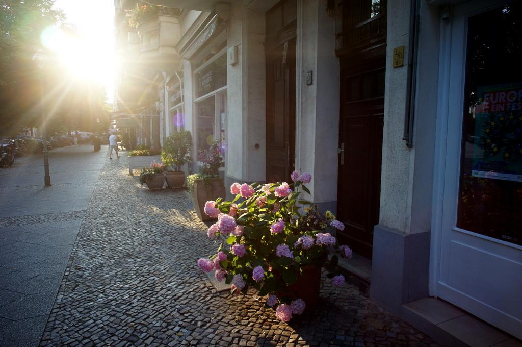 夏らしいベルリン、楽しまなきゃ!_c0180686_15210203.jpg