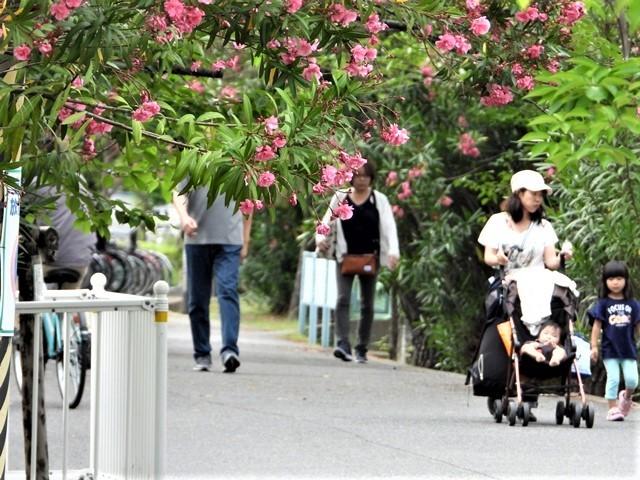 藤田八束の鉄道写真@理想的な国の運営、豊かな暮らしを平和に送りたい、そんな理想郷に近づけるために私達は何をどうすべきか_d0181492_21364865.jpg