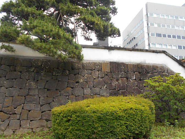 高崎で不首尾に終わる、の記_e0290193_20142685.jpg