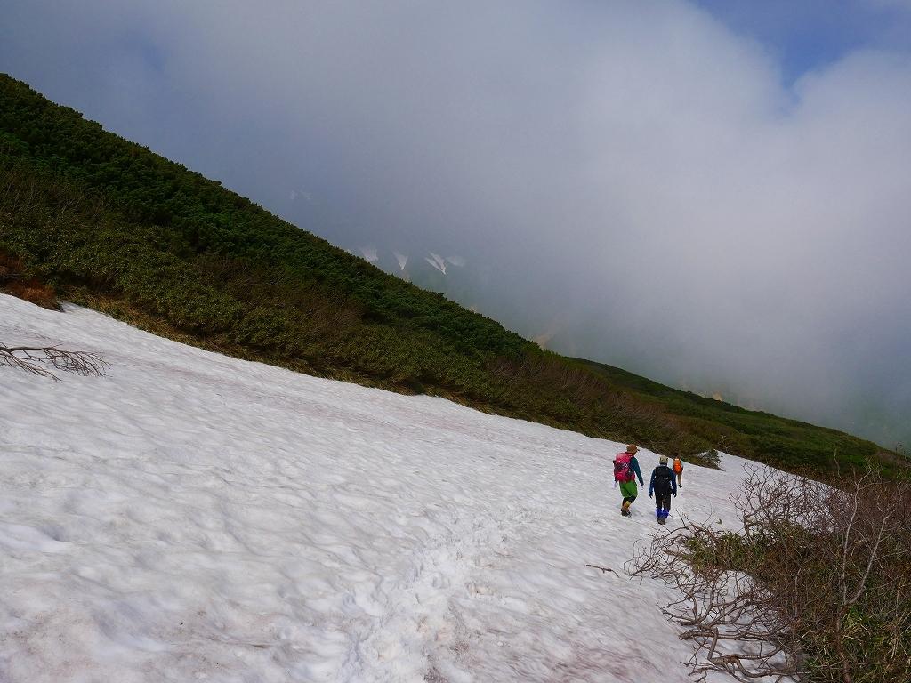 富良野岳、三峰山と上富良野岳、2019.6.24ー富良野岳編ー_f0138096_23481525.jpg