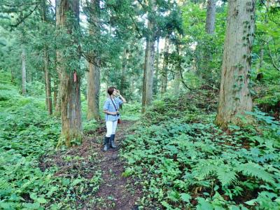 フットパスコースの木道工事が進んでいます_c0336902_21163806.jpg