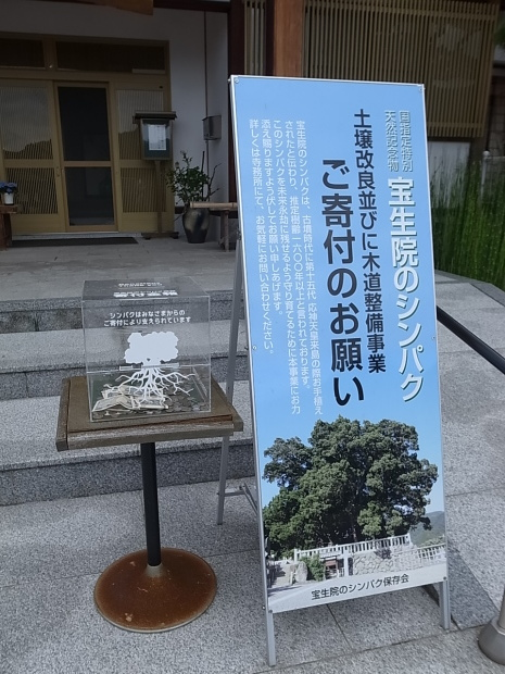 小豆島紀行part①2019-6-16_f0197703_10292608.jpg