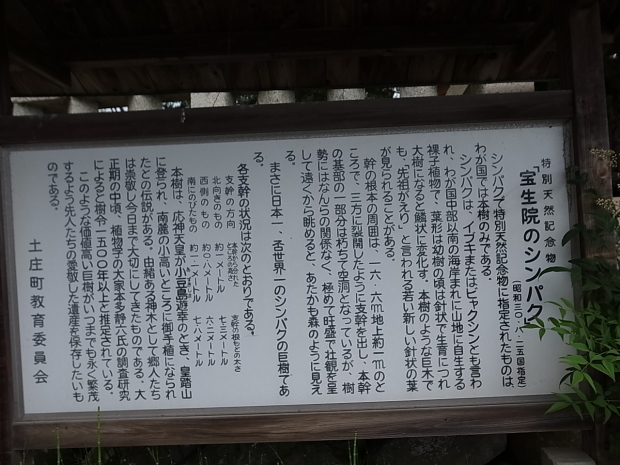 小豆島紀行part①2019-6-16_f0197703_10305455.jpg