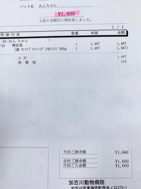 れんちゃん医療費の収支報告とお洋服事情。_d0355333_13412547.jpg