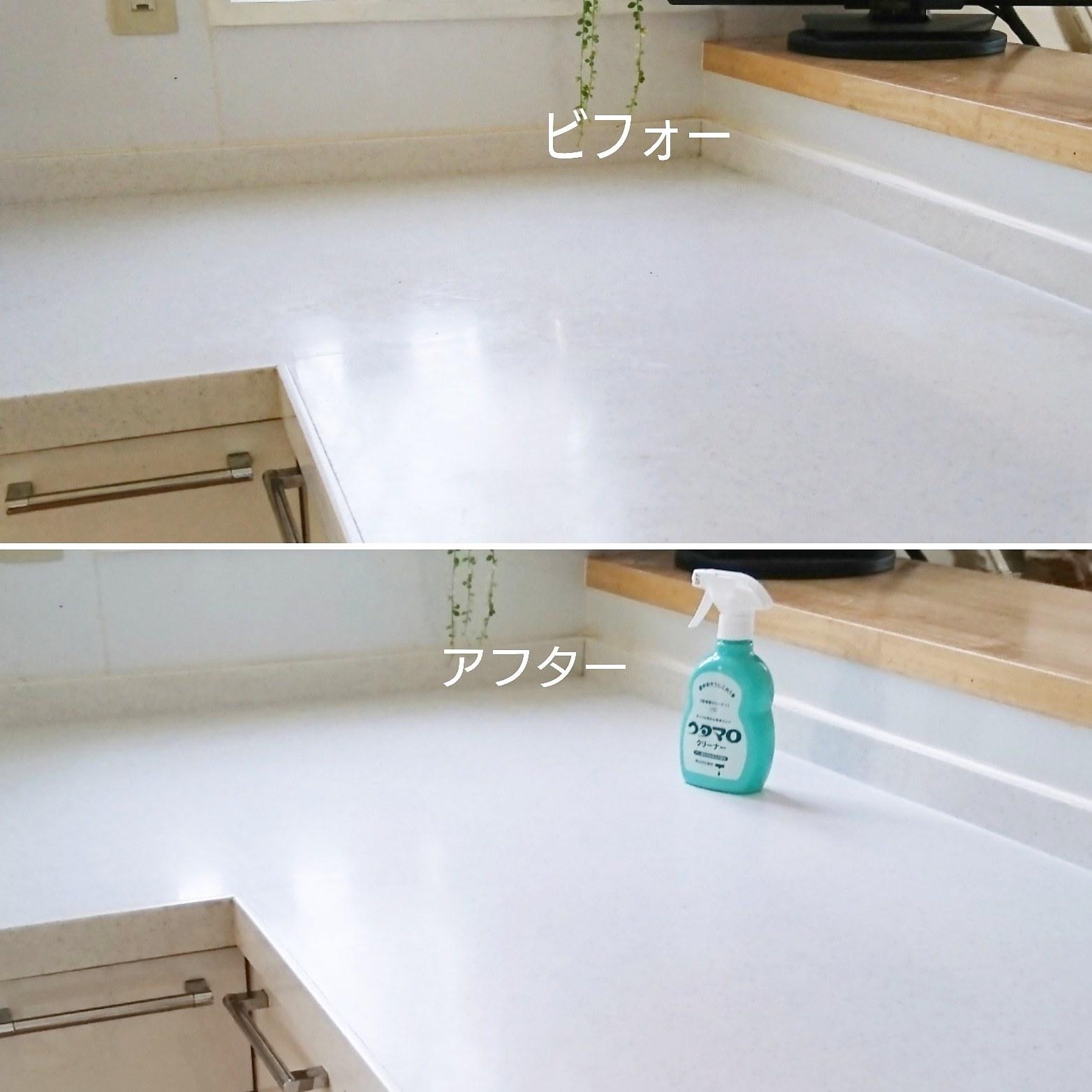 ++キッチン調理台の丸洗い*++_e0354456_10095710.jpg