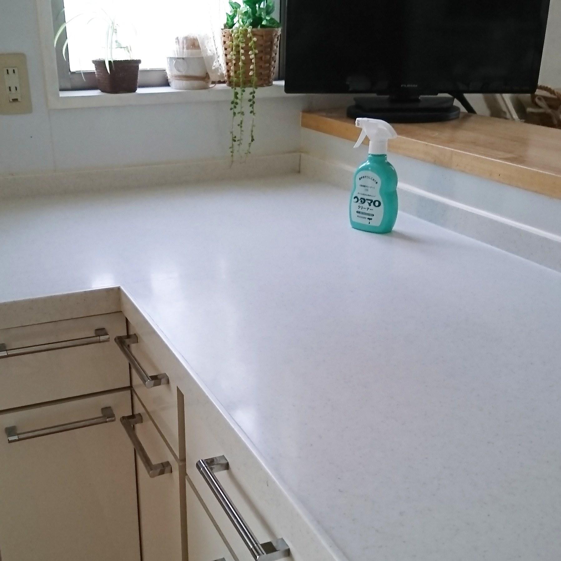 ++キッチン調理台の丸洗い*++_e0354456_10100550.jpg