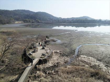 嵐山高雄パークウェイを走る_e0044657_22465619.jpg