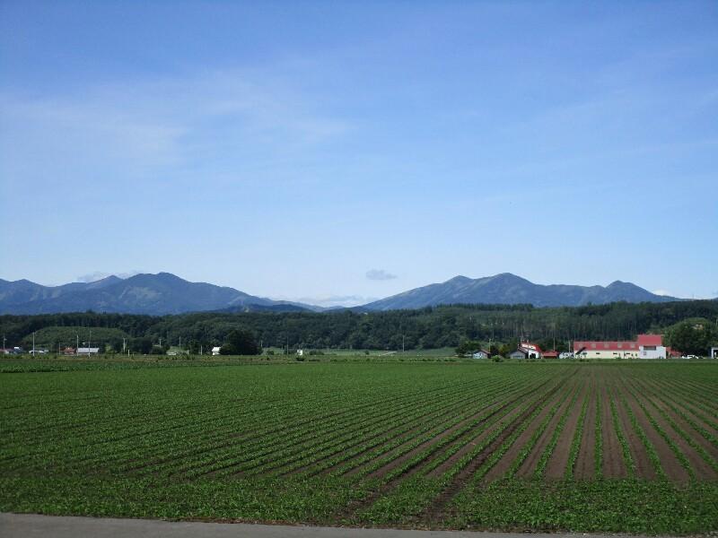 北海道again 8日目【屈足−帯広】十勝晴れで 暑かった_e0201281_19132996.jpg
