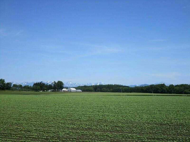 北海道again 8日目【屈足−帯広】十勝晴れで 暑かった_e0201281_19530906.jpg