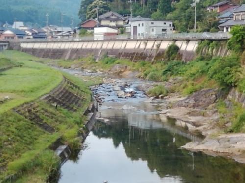 2019/6/26  水位観測  (槻の木橋より)_b0111189_05423052.jpg