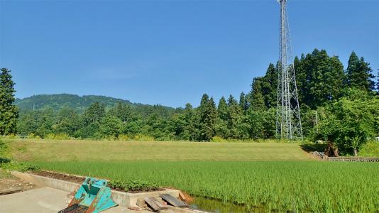 兼業農家はようやく「落水作業」をしました_c0336902_19202835.jpg