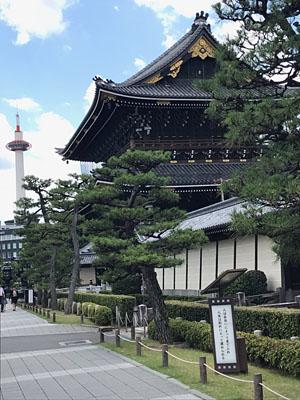 初夏の京都_a0133014_21121321.jpg