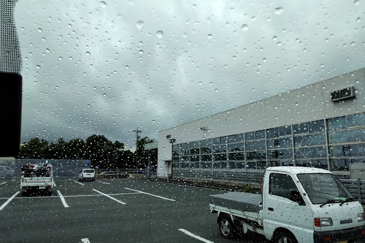 今日は昨日から雨予報..._a0159215_23463340.jpg
