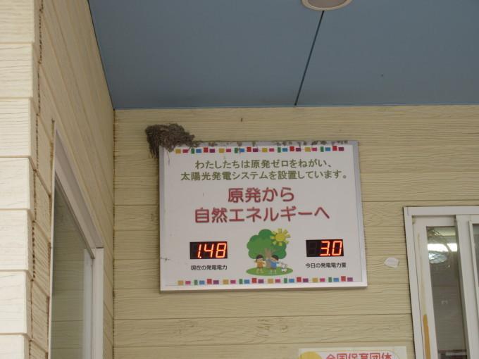 4・5歳児 ツバメとの出会い_b0117125_10452530.jpg