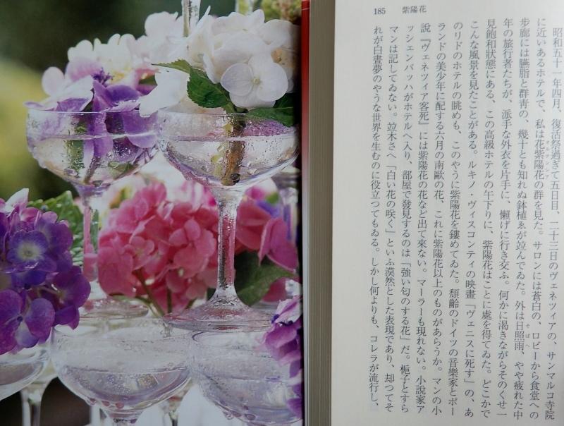 ヴェニスの紫陽花ホテル *Albergo Ortensia_f0374041_08343986.jpg