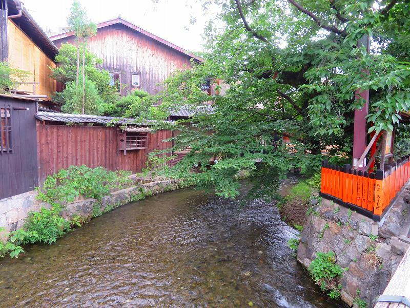 京都「祇園新橋」界隈20190624_e0237645_17133742.jpg
