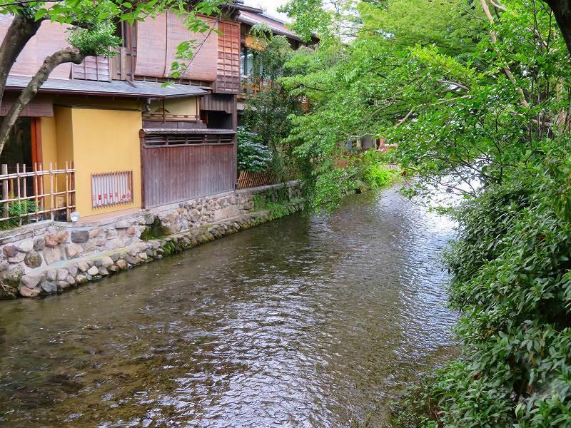 京都「祇園新橋」界隈20190624_e0237645_17133749.jpg