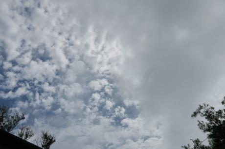 今朝の空_e0292172_11420180.jpeg