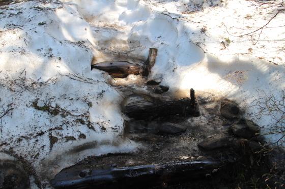 雪渓残る緑岳へ!_d0198793_11321575.jpg