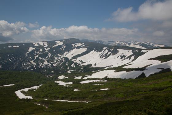 雪渓残る緑岳へ!_d0198793_11532815.jpg