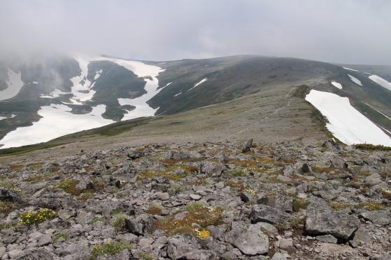 雪渓残る緑岳へ!_d0198793_12021032.jpg