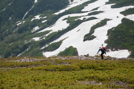 雪渓残る緑岳へ!_d0198793_12064187.jpg