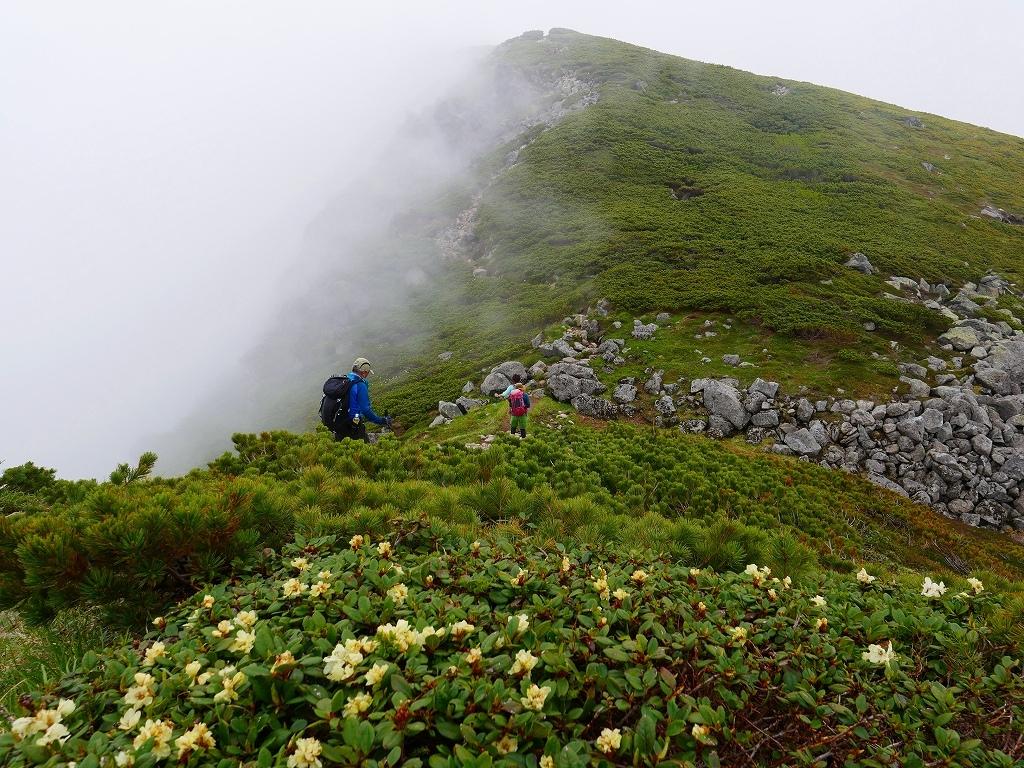 富良野岳、三峰山と上富良野岳、2019.6.24ー富良野岳から上富良野岳編ー_f0138096_21034817.jpg