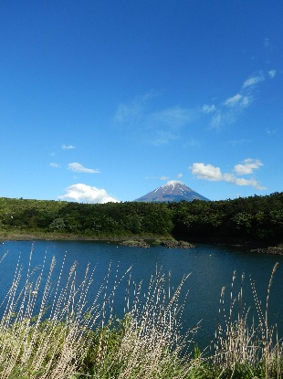 風と富士を求めて 山に湖に_e0077899_910435.jpg