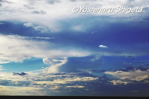 〜夏空〜_c0152400_21023793.jpg